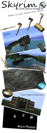 Skyrim Texture Pack [256x][1.2.5]